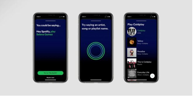 Spotify assistant vocal