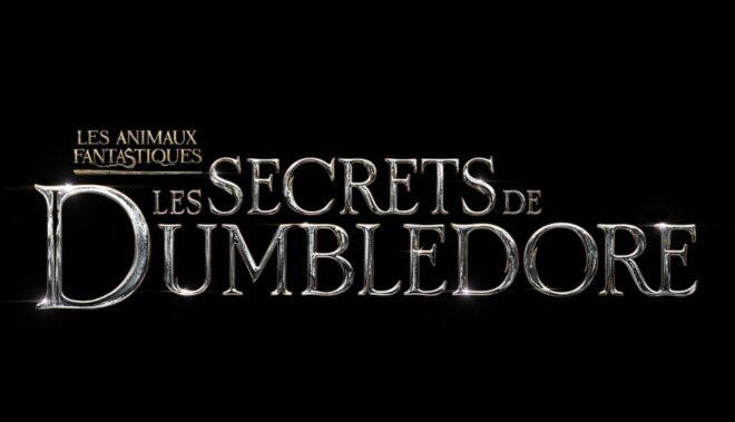 Dumbledore sera au coeur du prochain film Les Animaux Fantastiques.